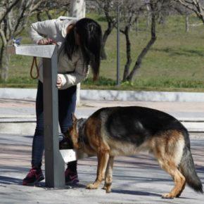 Cs Majadahonda propone instalar fuentes mixtas de agua potable para personas y perros en parques y zonas verdes