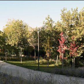 PROPUESTA DE ACUERDO POR UNA PLANIFICACIÓN DE LA MASA ARBÓREA Y REFORESTACIÓN EN MAJADAHONDA